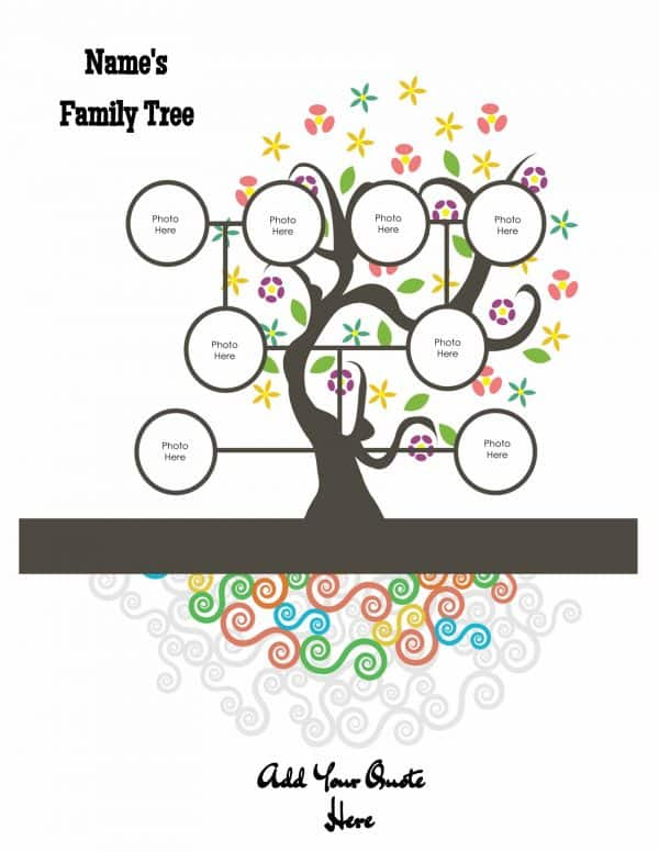 family tree with colored roots